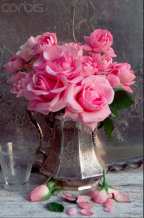 Pink roses in Silver Tea Pot