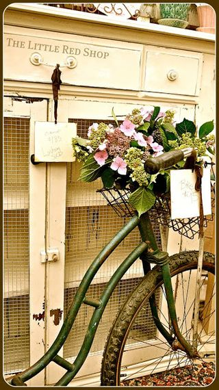 Flower Bike AA