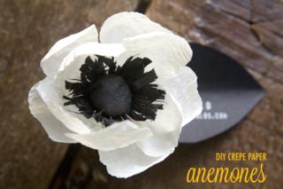 Diy-paper-anemones-001