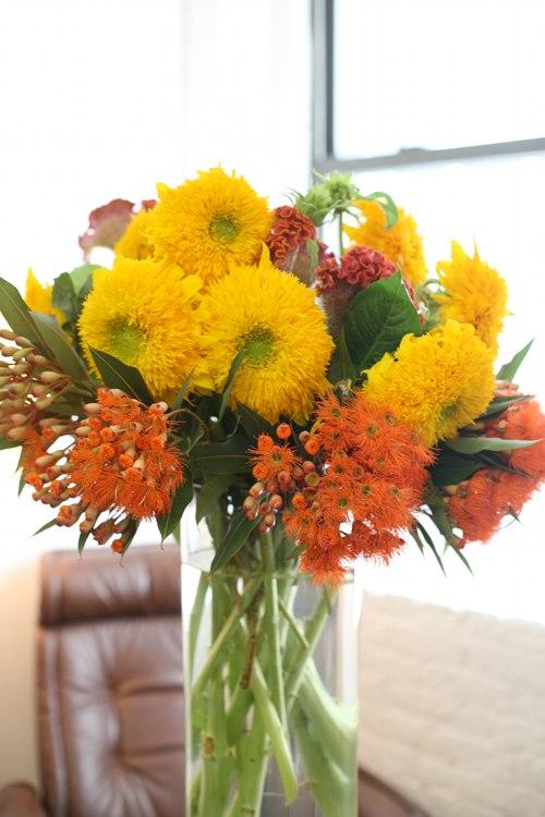 Teddy Bear Sunflower and Orange Flower DS